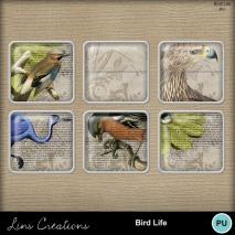 birdlife8