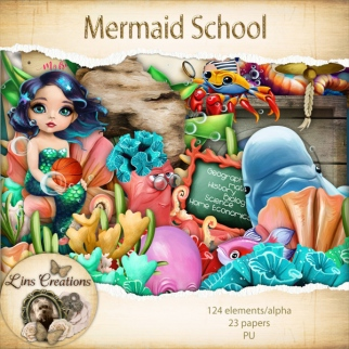 mermaidschool16