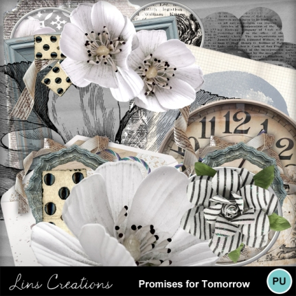 promisesfortomorrow16